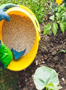 fertilizer-industry